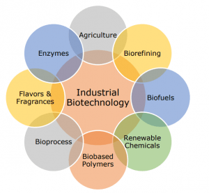Microorganisms and biotechnology