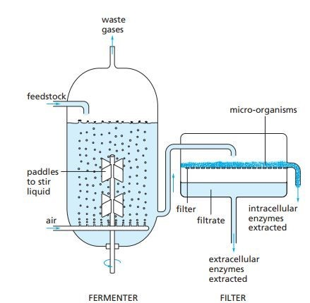 fermenter schematic